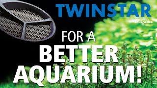 Download TWINSTAR! For a better algae-free aquarium! Video