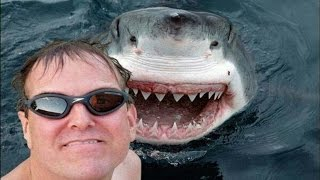 Download 25 Most Dangerous Selfies Ever! Video