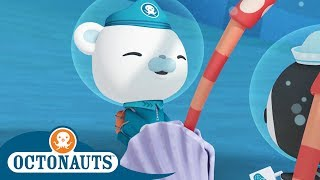 Download Octonauts - Helping A Spider Crab | Cartoons for Kids | Underwater Sea Education Video