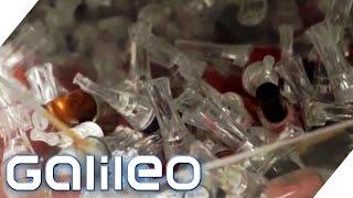 Download Wahnsinn im größten Supermarkt der Welt (1/2): Weihnachten Spezial | Galileo | ProSieben Video