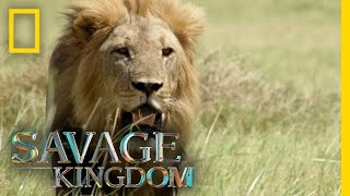 Download Execution or Exile? | Savage Kingdom Video