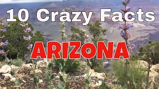 Download 10 Crazy Facts About Arizona Video