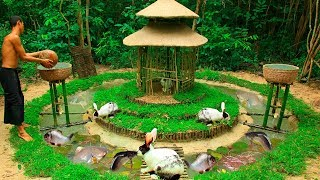 Download Feed Beautiful Wild Rabbit and Build Fish Pond For Catfish around Castle Mud Rabbit House Video