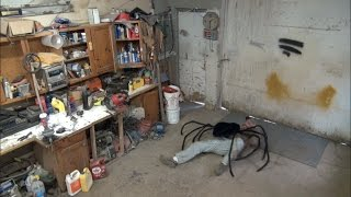 Download GIANT SPIDER ATTACK - CAUGHT ON SECURITY CAMERAS Video