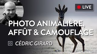 Download [LIVE/REPLAY] Photo animalière : les techniques de Cédric Girard #01 Video