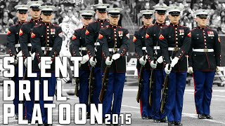 Download Silent Drill Platoon Performs At Halftime - Texans vs Jets - (11-22-15) Video