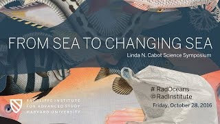 Download From Sea to Changing Sea | Early Life in the Oceans || Radcliffe Institute Video