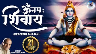 Download Om Namaha Shivaya (Peaceful Bhajan) Video