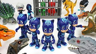 Download Friends got caught by Dinosaurs army! Go PJ Masks Mirror Image attack!! - DuDuPopTOY Video