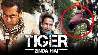 Download Salman Khan बने खतरों के खिलाडी WOLF के साथ किया Tiger Zinda Hai का Action Scene Video