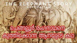 Download Akavoor Govindan - Dangerous Elephant Story | The Elephant Story | Ep-07 | Nettipattam Video