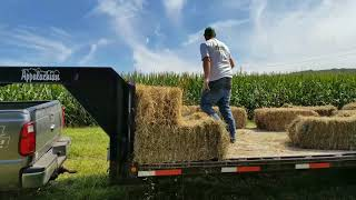 Download Picking up small bales with the F350 and Appalachian gooseneck trailer Video