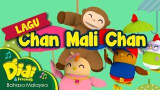 Download Lagu Kanak Kanak | Chan Mali Chan | Didi & Friends Video