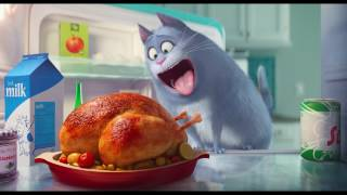 Download The Secret Life of Pets - Trailer Video