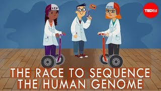 Download The race to sequence the human genome - Tien Nguyen Video