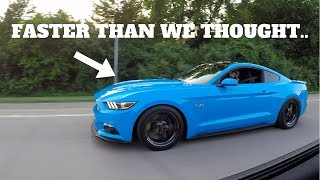 Download 1000HP MUSTANG GT DESTROYED OUR HELLCAT IN A RACE! Video