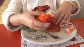 Download How to Eat A Lobster Video