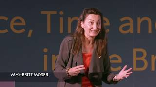 """Download """"If you relax, you're more creative"""" May-Britt Moser, Nobel Prize in Physiology or Medicine Video"""