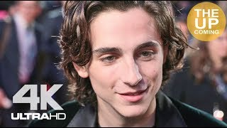 Download Timothée Chalamet interview at Call Me By Your Name premiere for London Film Festival Video