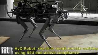 Download HyQ - IIT's Hydraulic Quadruped Robot - Balancing and First Outdoor Tests Video