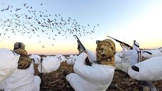 Download 8 MAN LIMIT!!! EPIC Goose Hunting in Kansas 2017 Video