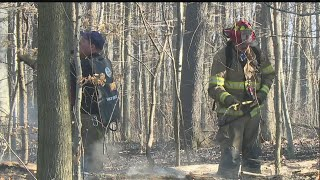 Download Several fire departments around Valley spend day fighting brush fires Video