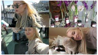 Download Vlog: YOGA AT A BOTANICAL GARDEN? Video
