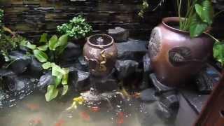 Download HỒ CÁ KOI NHỎ ĐẸP SAU PHÒNG ĂN KDC BÌNH TRỊ ĐÔNG Video