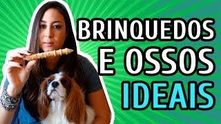 Download BRINQUEDOS PERIGOSOS E SEGUROS PRA CÃES Video