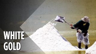 Download South America's Lithium Boom: A Blessing Or A Curse? Video