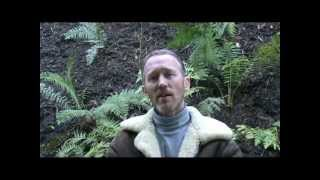 Download Fernglade Farm - Worm Farm Humanure System - Permaculture and Organic Video