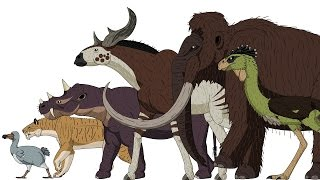 Download Cenozoic Beasts - Animated Size Comparison Video
