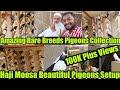 Download Pigeons Of Haji Moosa Rangeen/Kashparay/Sherazi/Khaal/Qabray/Ghaghray/Jogiye Kabooter Amazing Setup Video