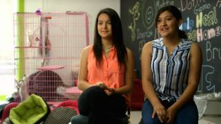 Download Ava and Lexie's Animal Shelter - Make Your Mark - Disney Channel Official Video