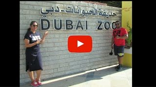 Download Dubai Zoo | 2016 Video