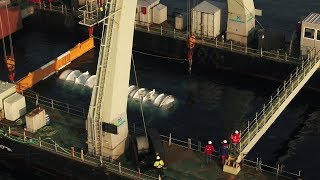 Download Microsoft tests Project Natick, self-sustaining underwater datacenter Video