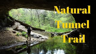 Download Bennett Spring Hike - Natural Tunnel Trail Video