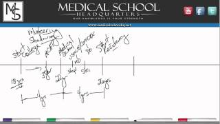 Download Pre Med 101 - The Roadmap to Becoming a Doctor Video