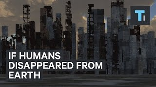 Download If humans disappeared from Earth Video