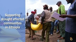 Download New drought risks in Ethiopia put recovery at stake Video