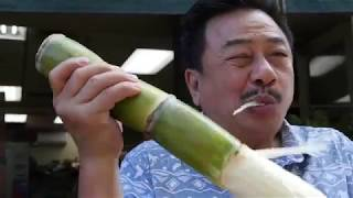 """Download """"NGƯỜI VIỆT TRÊN ĐẢO THẦN TIÊN- HAWAII"""" Tập 14- MC VIỆT THẢO- CBL(700)- June 12, 2018 Video"""