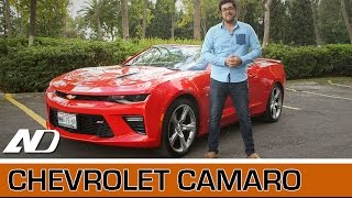 Download Chevrolet Camaro - Ni tan americano como aparenta Video