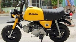 Download Honda Gorilla 50cc Monkey bike Collection Video