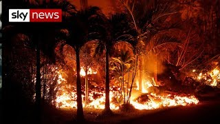 Download Special Report: Hawaii - Island of Fire Video