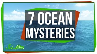 Download 7 Things We Don't Know About the Ocean Video