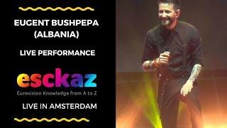 Download ESCKAZ in Amsterdam: Eugent Bushpepa (Albania) - Mall Video