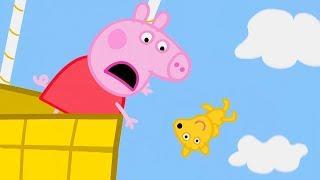Download Peppa Pig Nederlands Compilatie Nieuwe Afleveringen 🧸 Oh nee, Teddy! | Tekenfilm | Peppa de Big Video