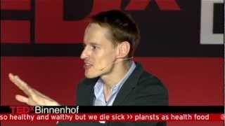 Download Innovation as a Dutch experience: Daan Roosegaarde at TEDxBinnenhof 2012 Video