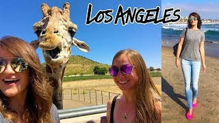 Download FAVORITE THINGS TO DO IN LA! Video