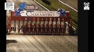 Download CLÁSICO DEL CARIBE 2016 - EL TIGRE MONO (PANAMÁ) POST PARADE & POST RACE Video